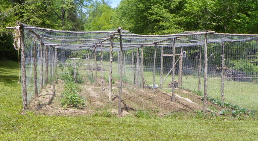 2012 April Garden